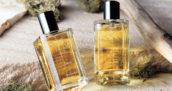 中間淳太さんの私物◆サタジャニ 2017年5月13日◆香水
